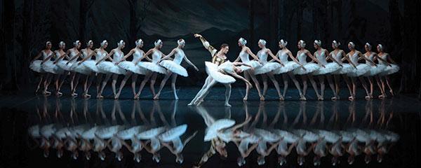 The-St-Petersburg-Ballet-Swan-Lake-Swans-duo_LR
